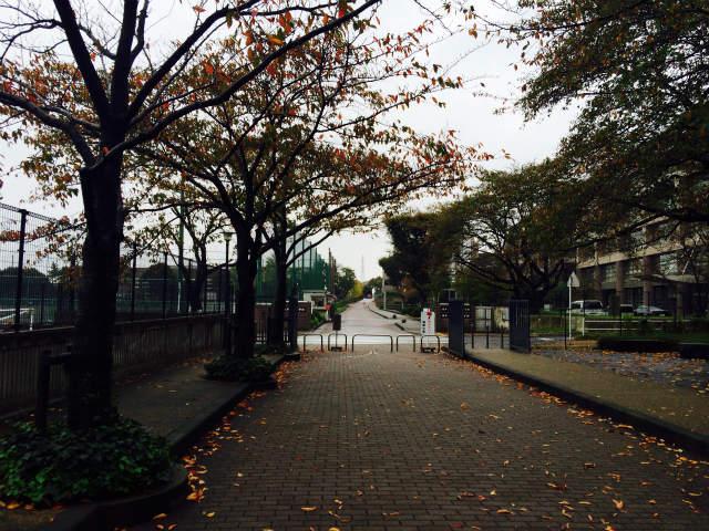 2015年10月16日日本大学藤沢中学校様にて講演をさせていただきました